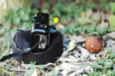 Pod with compact camera on ground