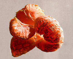 clementine pieces