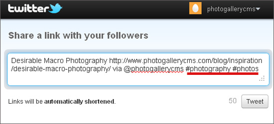 twitter photography hashtags