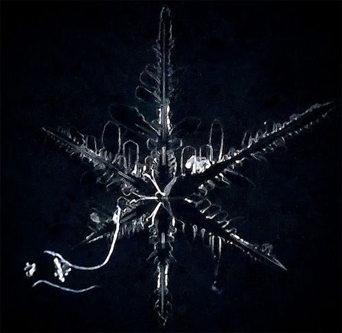 Close-up photo of a snowflake
