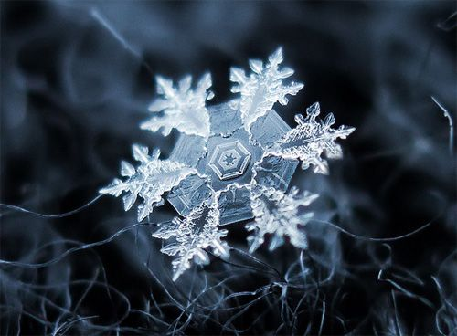 Macro photo of a snowflake