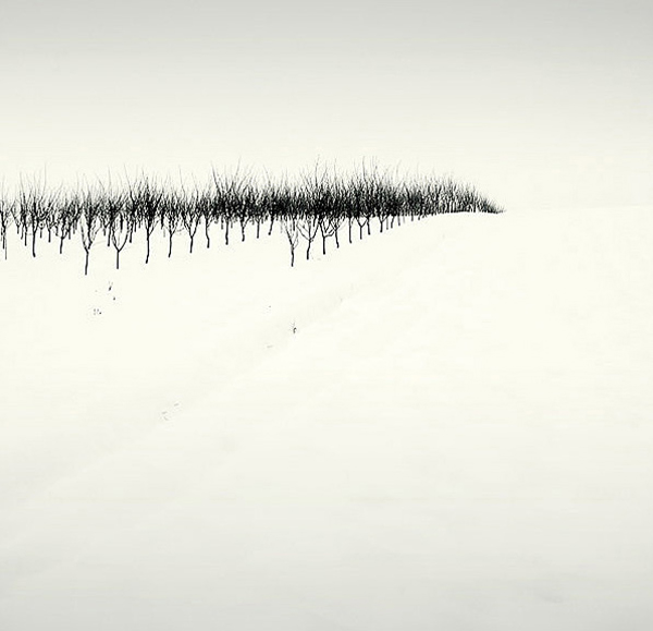 Minimalist landscape photography · landscape covered in snow by vladimir zivckvic