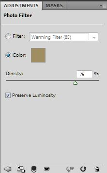 Sepia Photo Filter 75 Density