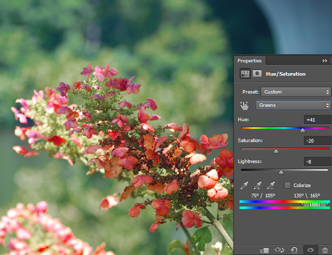 Adjust the Hue/Saturation for Greens.