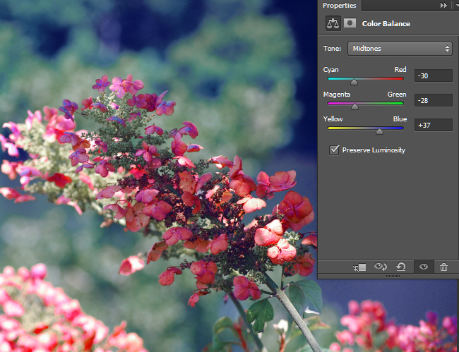 Adjust the color balance for the Midtones.