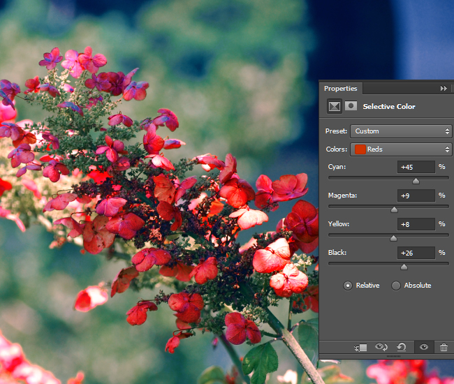 Adjust the intensity of the CMYK values for the red areas of the photo.