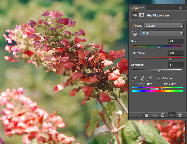 Adjust the Hue/Saturation for Reds.