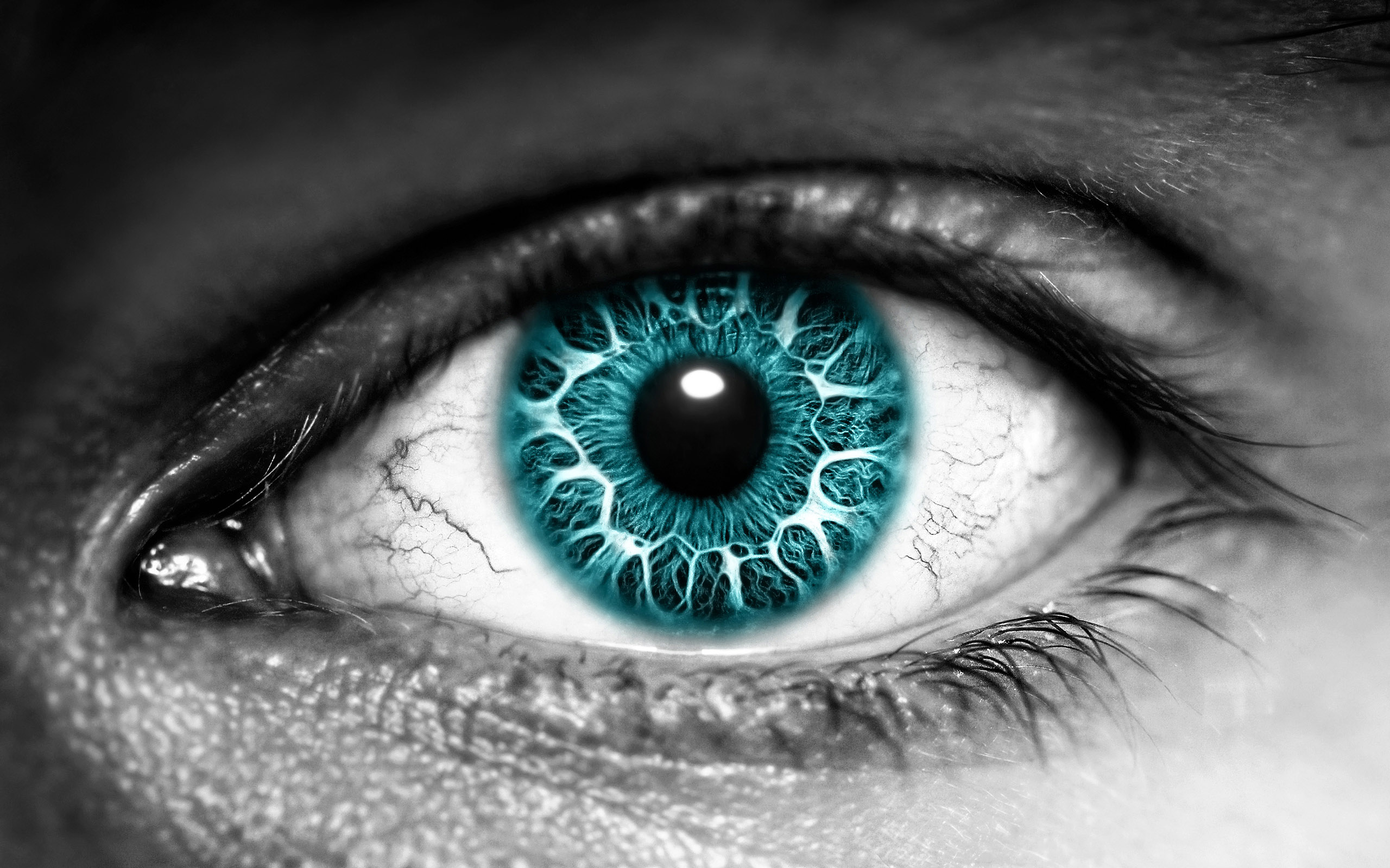 Everyone loves a good eye photograph, and this one is no exception, The post processing in Photoshop have really helped to bring out exciting details within the Iris.