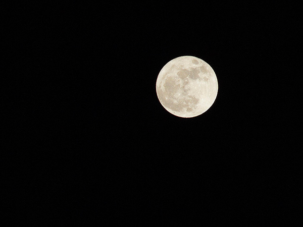 Bask in the lunar glow of the moon! Photo by Carsten aus Bonn