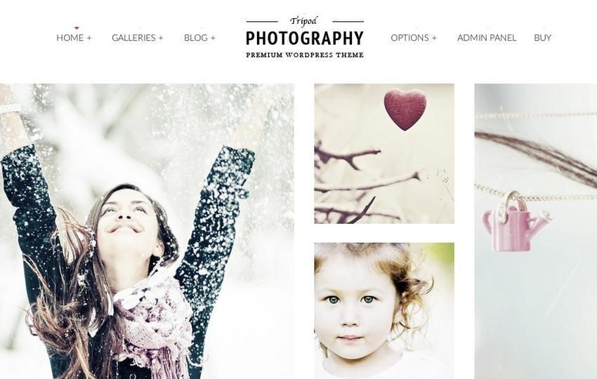 WordPress makes it easy to get a great looking photo blog, and fast.