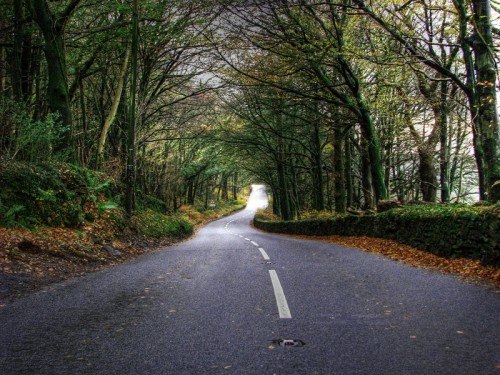 I took this picture on a quite back road in England. When including roads in landscapes always stand in the centre of the road as this gives the image a far more powerful perspective