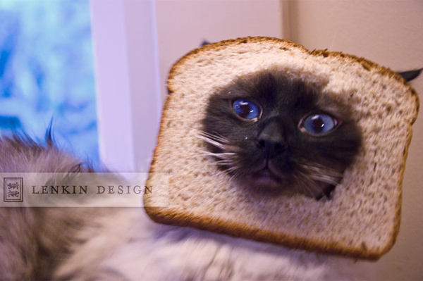 Skunk bread 02.03.12-08web by Lenkin Design
