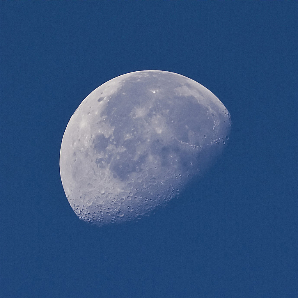 With a good zoom lens and tripod, you can get some seriously good day time images of the moon