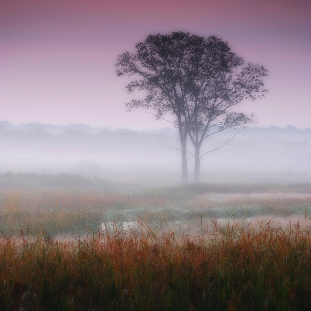 Providing you can get yourself out of bed early enough, the misty mornings that the fall offers are certainly worth it.