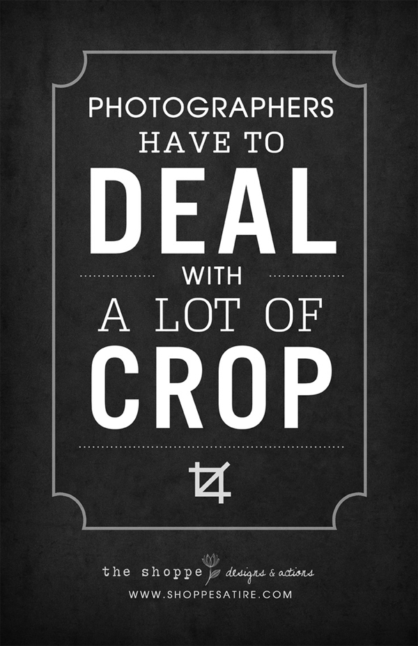 5-funny-typography-posters-about-photographers