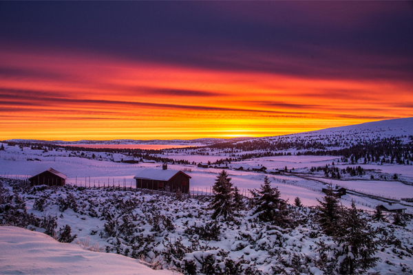 Winter morning by Jorn Allan Pedersen