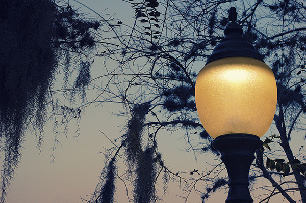 Lamp at Night