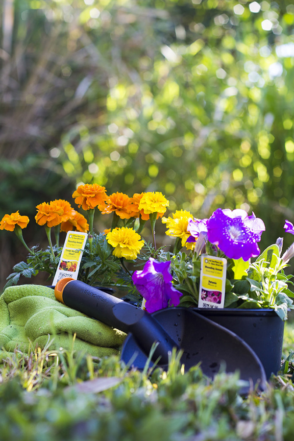 Spring Gardening - Tim Gilbreath