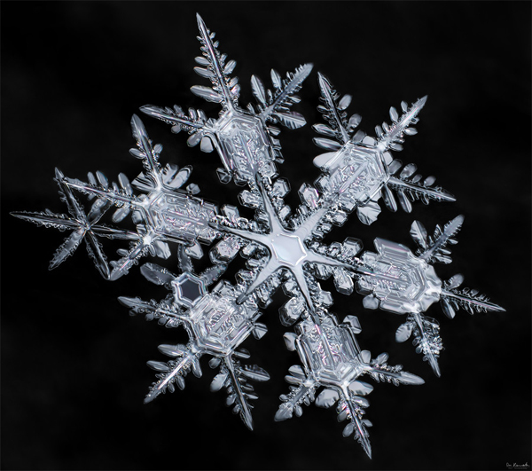 Starburst Snowflake by Don Komarechka