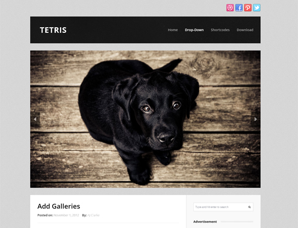 free photography wordpress themes