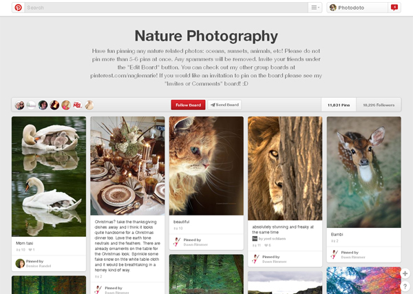 Nature Photography Group Board by Marie Nagle