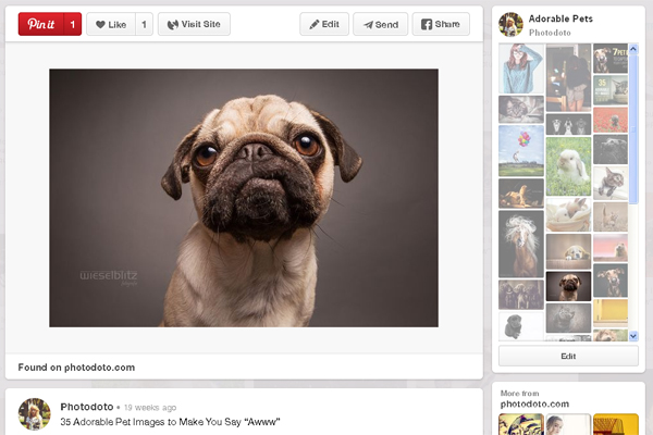 5-pinterest-marketing-guide-for-photographers-2014