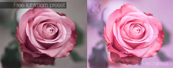 EliseEnchanted Lightroom presets