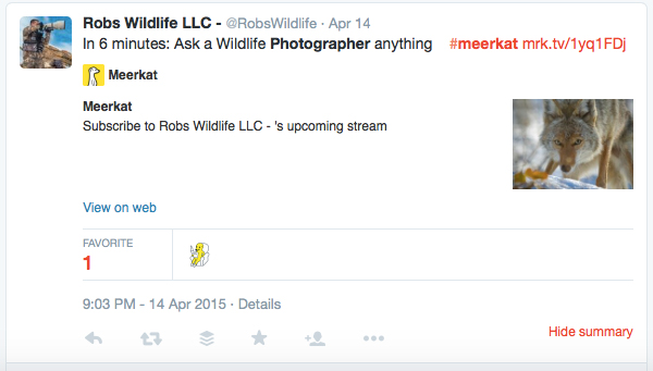 1-periscope-and-meerkat-for-photographers