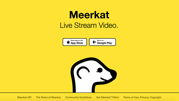 14-periscope-and-meerkat-for-photographers