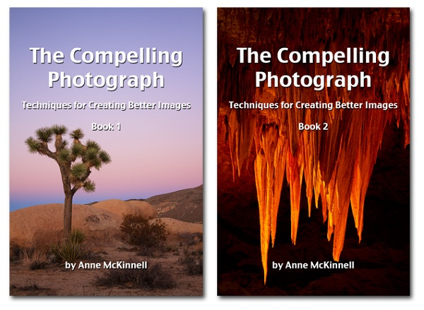 Compelling Photograph Ebook Bundle