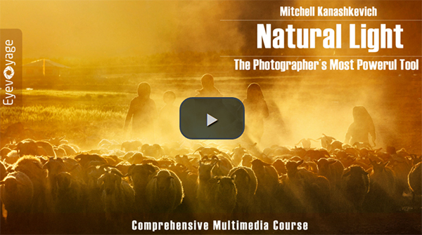 Natural Light Multimedia Course