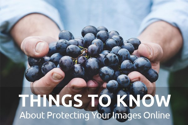 Protecting Your Images Online