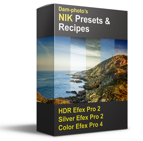 Google Nik Collection Presets & Recipes