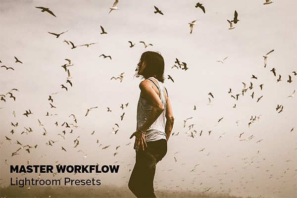 Free & Premium Lightroom Presets No Photographer Should Miss