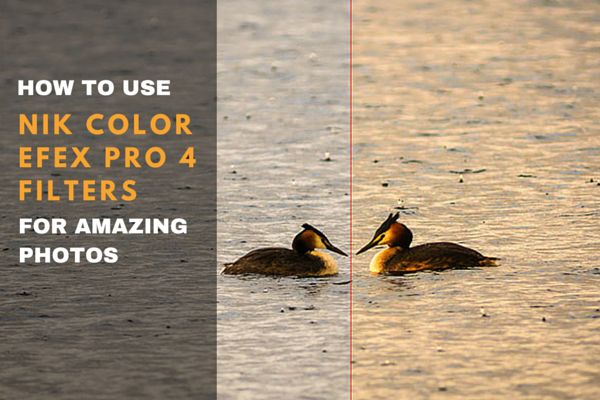 Best Nik Color Efex Pro 4 Filters for Excellent Photos