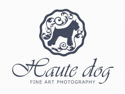 Logo Design Inspiration for Photographers