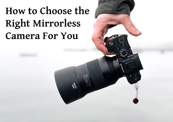 choose_mirrorless_1