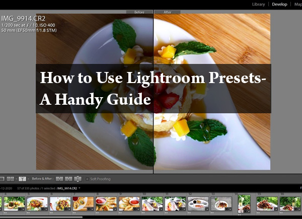 lightroom-presets-howto-1