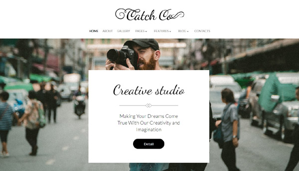 wordpress-portfolio-themes-1
